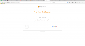 Google Analytic Rok Meglič certifikat