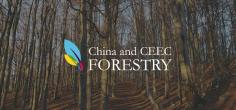 China-ceecforestry